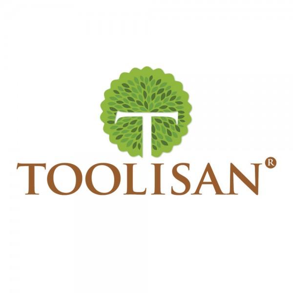 Toolisan